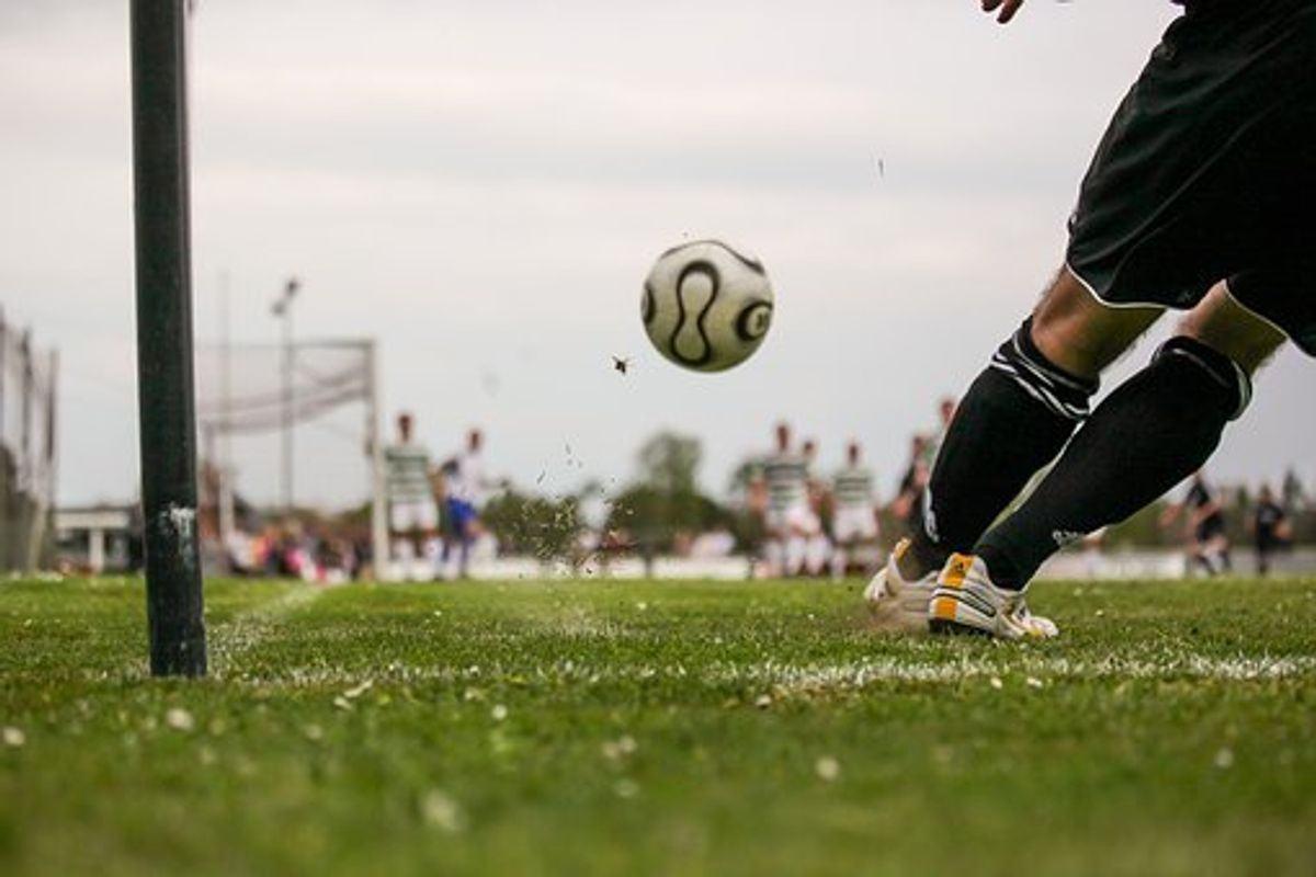 Msn Sports App