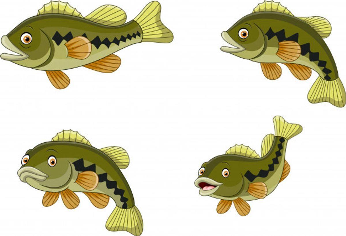Rapala fishing game review